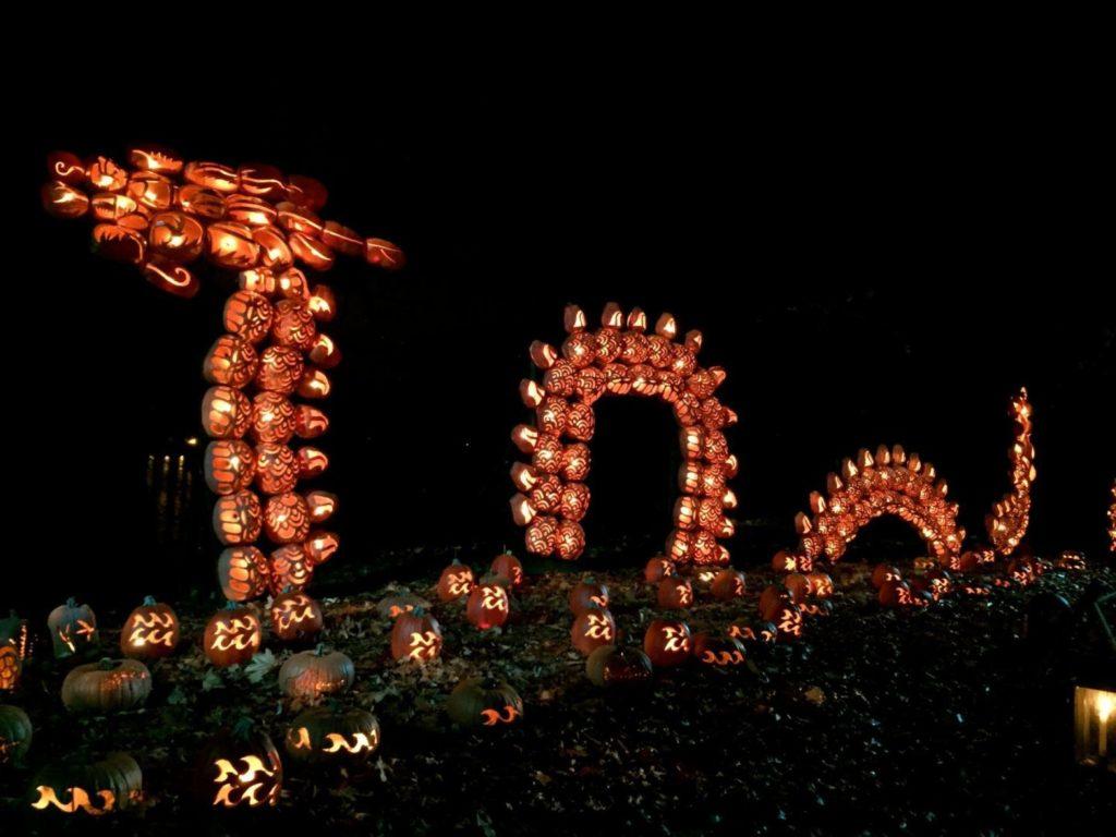 pumpkins Great Blaze Halloween