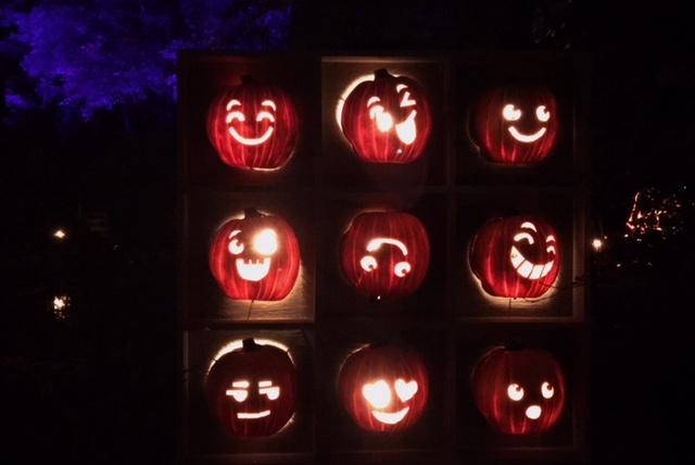 Halloween Great Blaze pumpkins