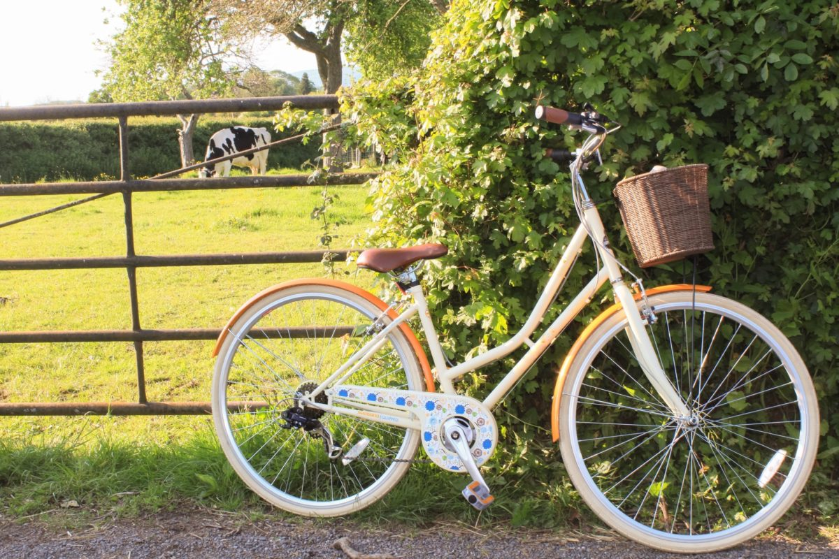 the best luxury brands for road, electric, hybrid and mountain bicycles, and bikes made just for women.