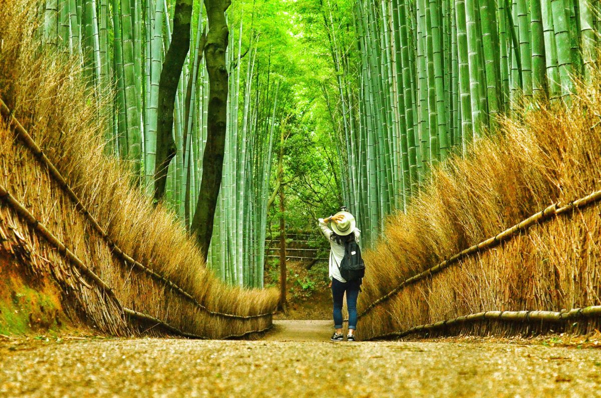 most beautiful gardens in asia