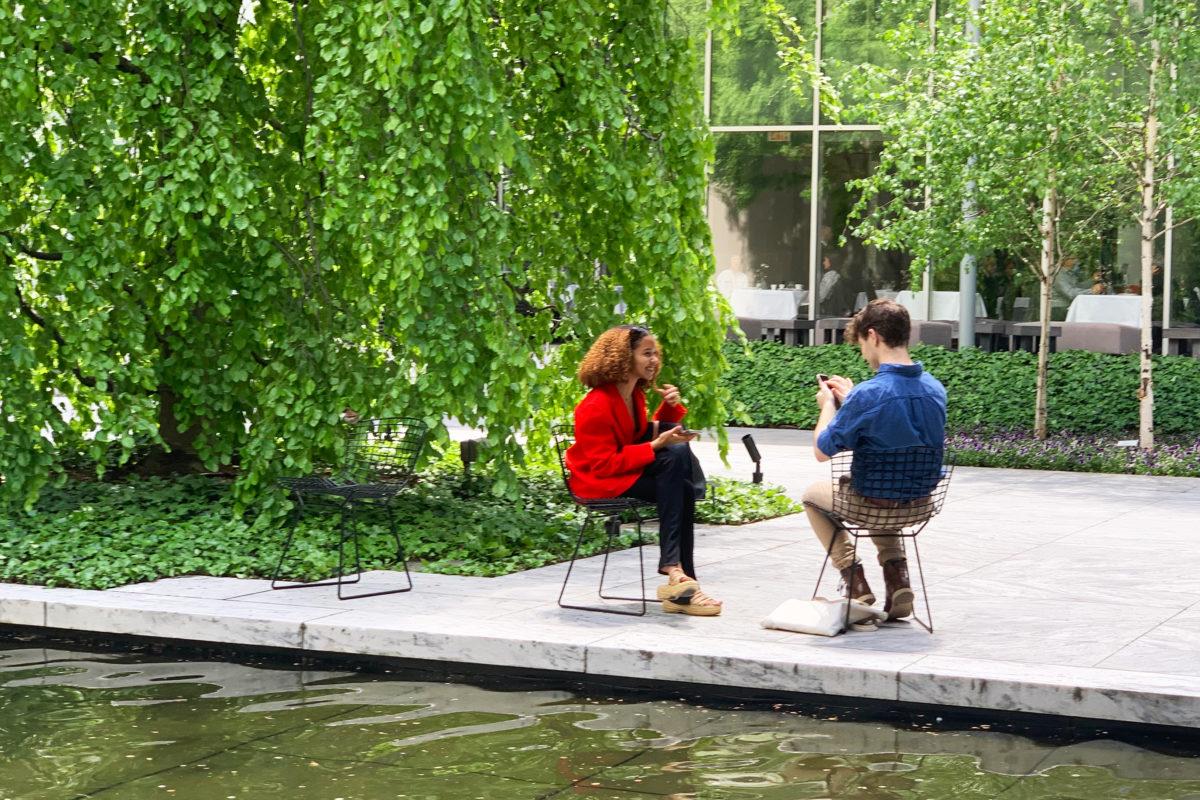 The Sculpture Garden at the MoMA