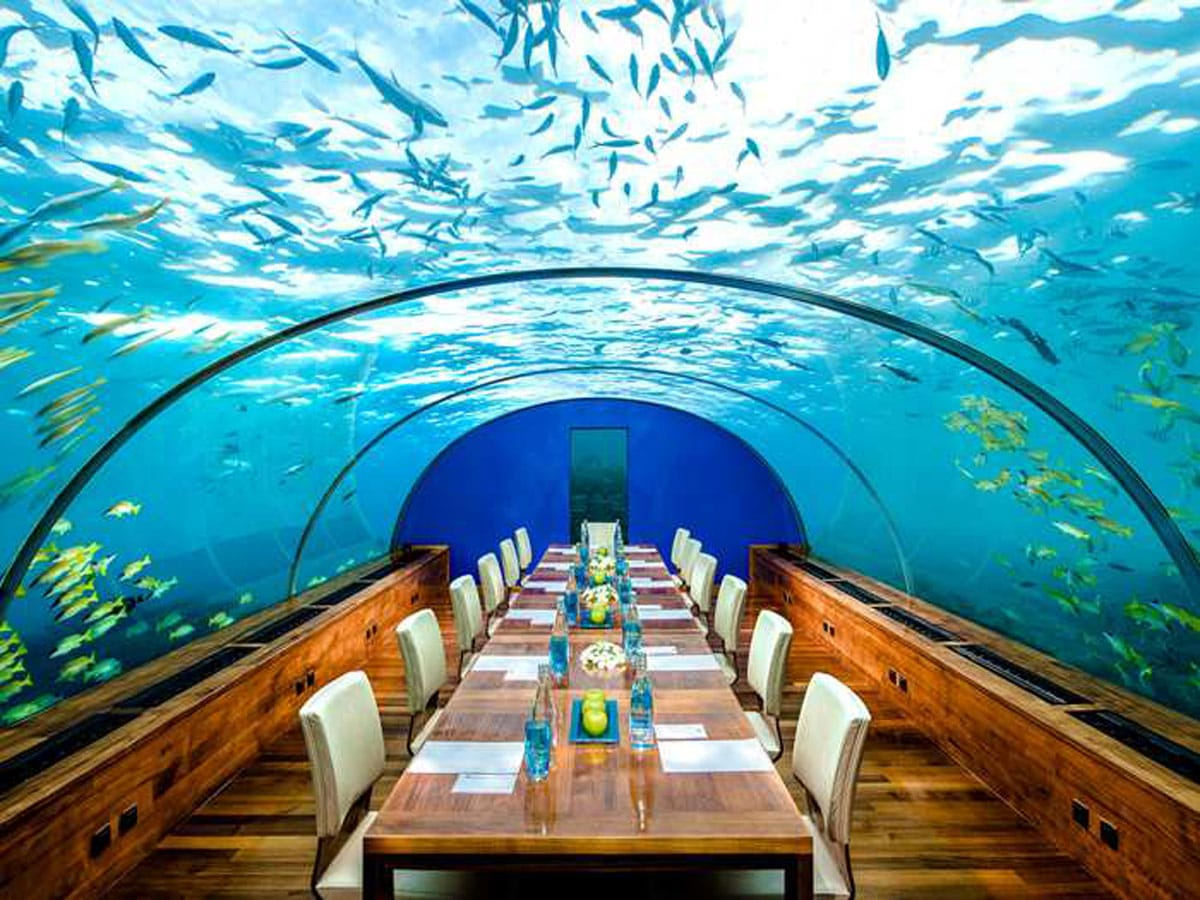the best destination restaurants worth traveling for