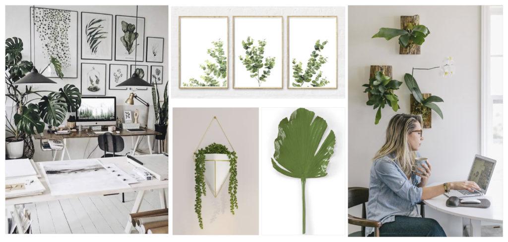 luxury home office plants