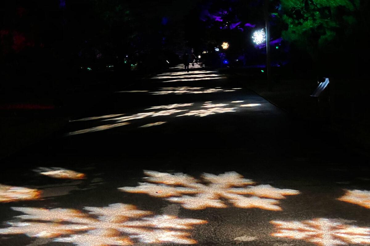 NYBG Holiday Lights show 2020. Photo Credit: Dandelion Chandelier.