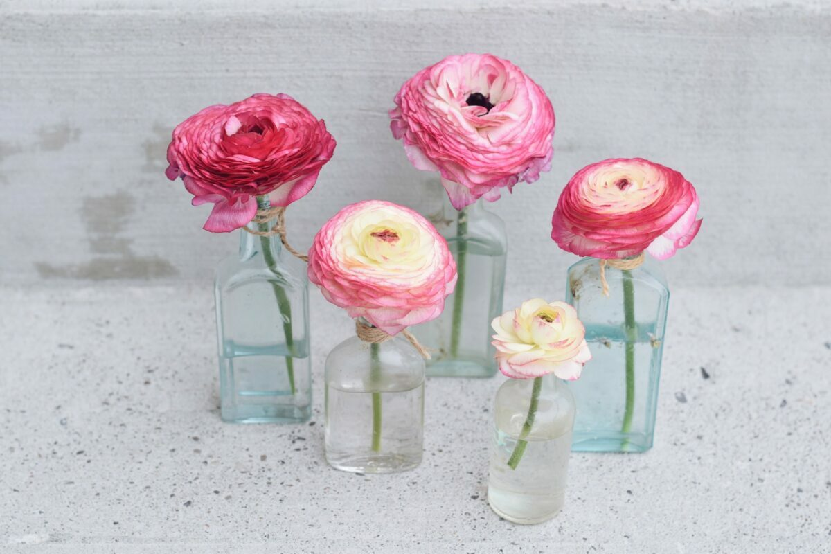 5 Surprising Flowers Perfect for a 2021 Valentine's Day Gift