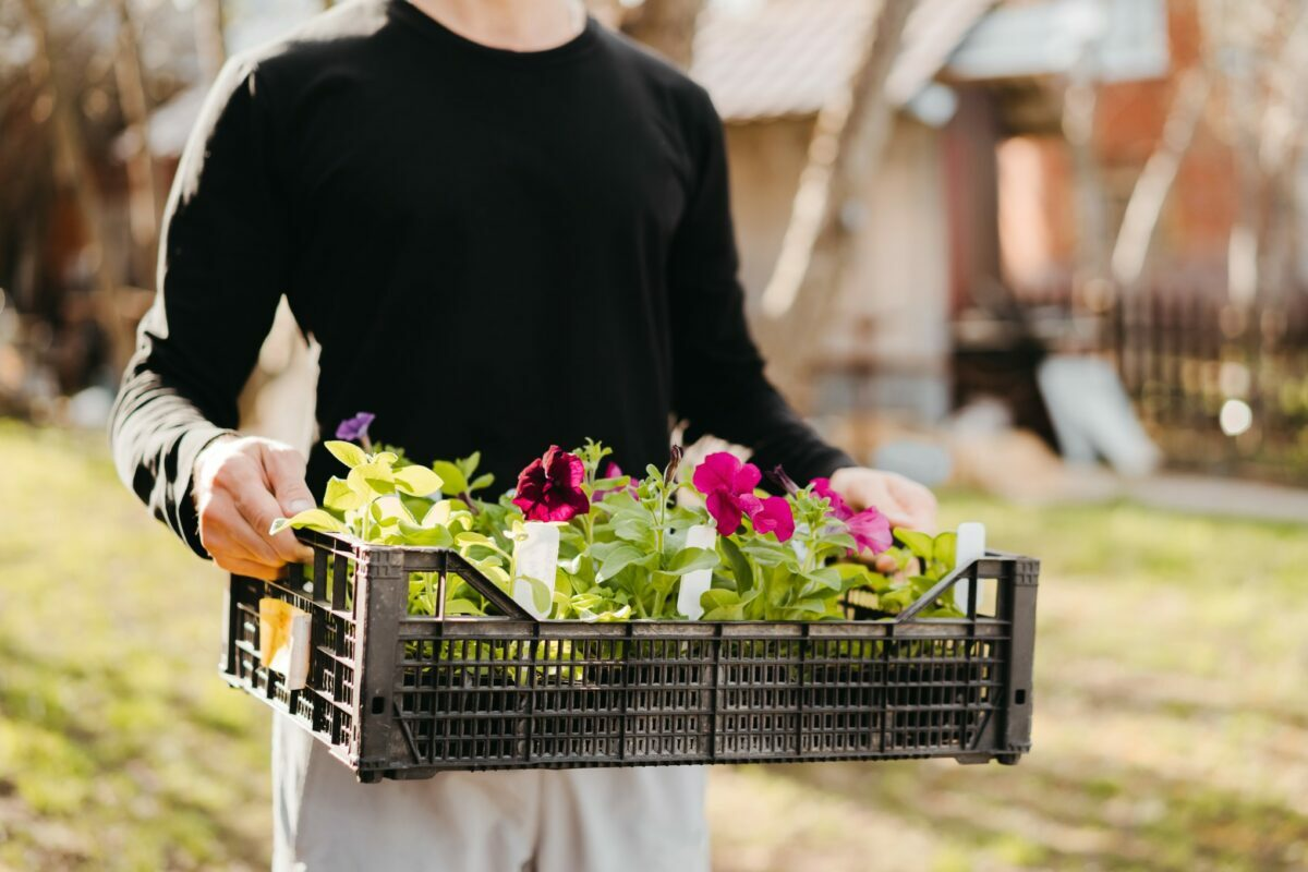 Blythe Yost, CEO of Tilly, shares expert tips and a list of six essential tools to buy to make starting a garden easy for beginners